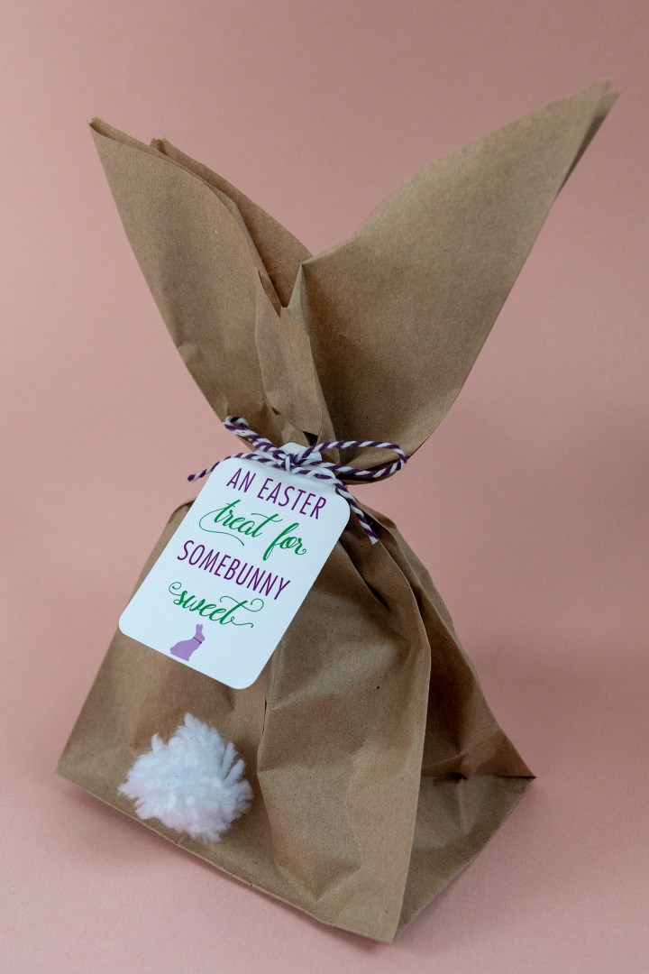 Easter Treat for Somebunny Sweet Gift Tag Free Printable and Easter Bunny Gift Tag Tutorial