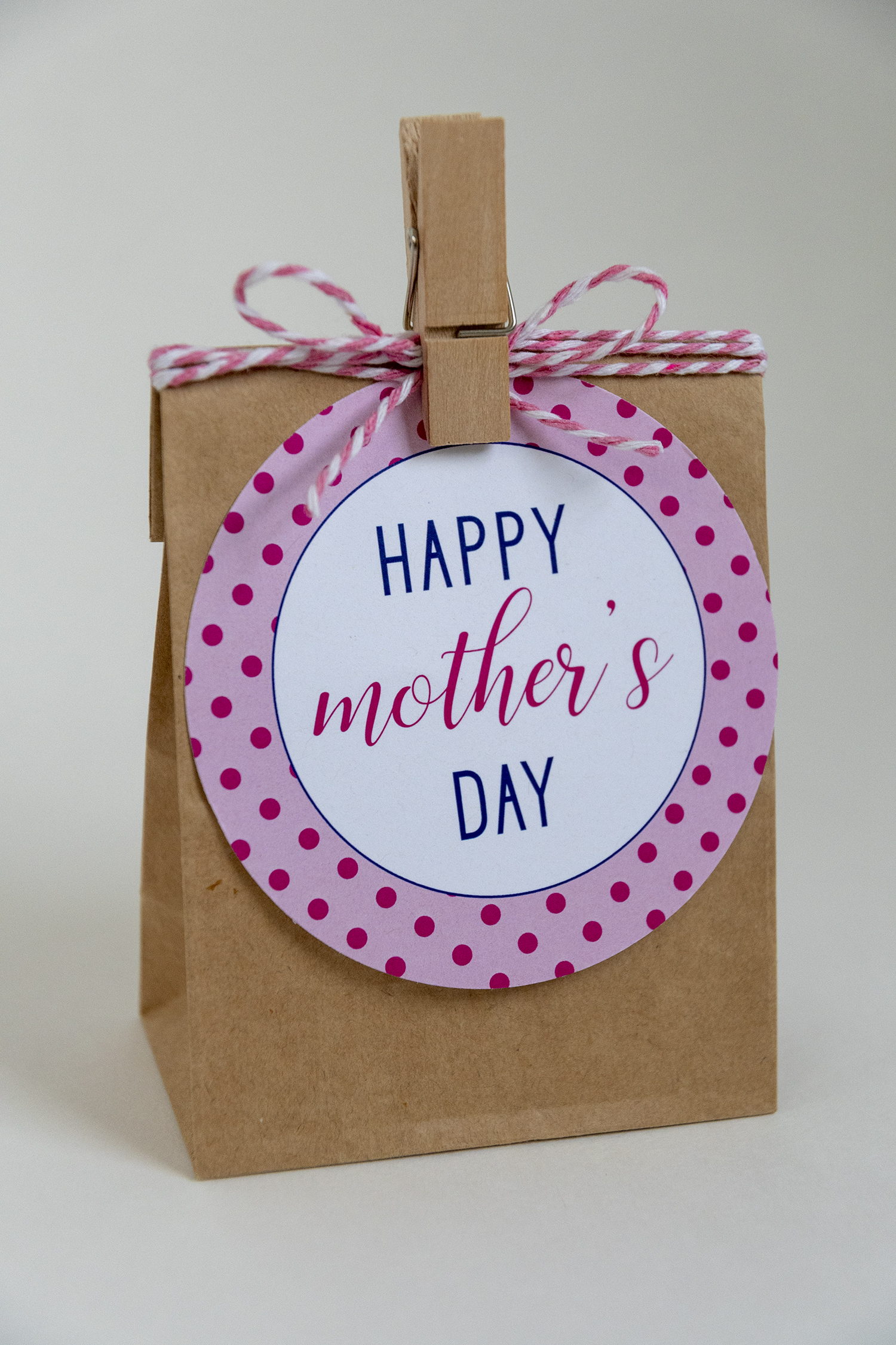 photo relating to Free Printable Mothers Day Tags named Joyful Moms Working day Absolutely free Printable Reward Tags FAKING IT Magnificent