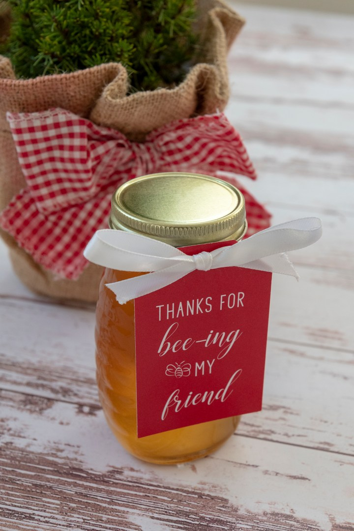 Valentine's Day Honey Gift Tags Free Download
