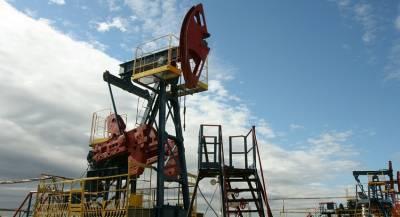 Индия значительно увеличит запасы нефти