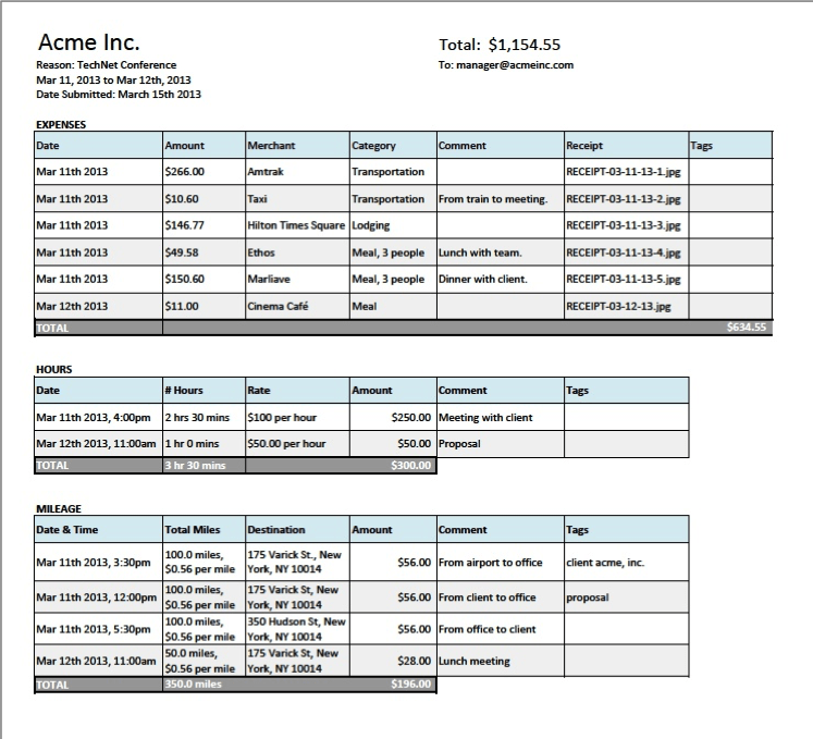 iPhone App Expense Report Template