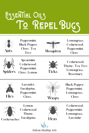 Essential Oils to repel bugs and insects