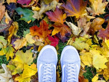 silver shoes in fall leaves