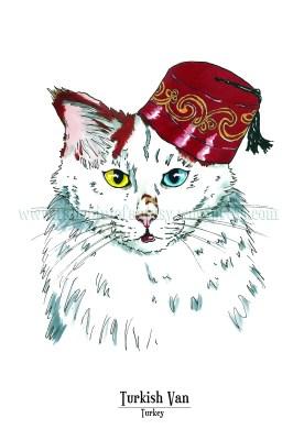 Feline Origins_turkish van_logo