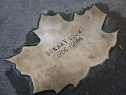 Leaf of Remembrance for Bokary Loum