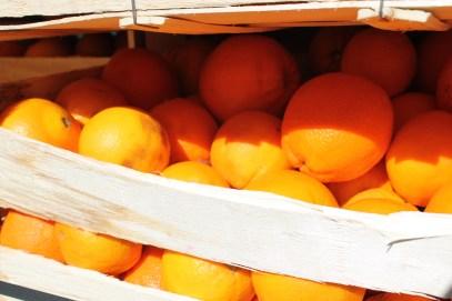 of oranges