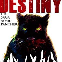 Thief of Destiny Cover