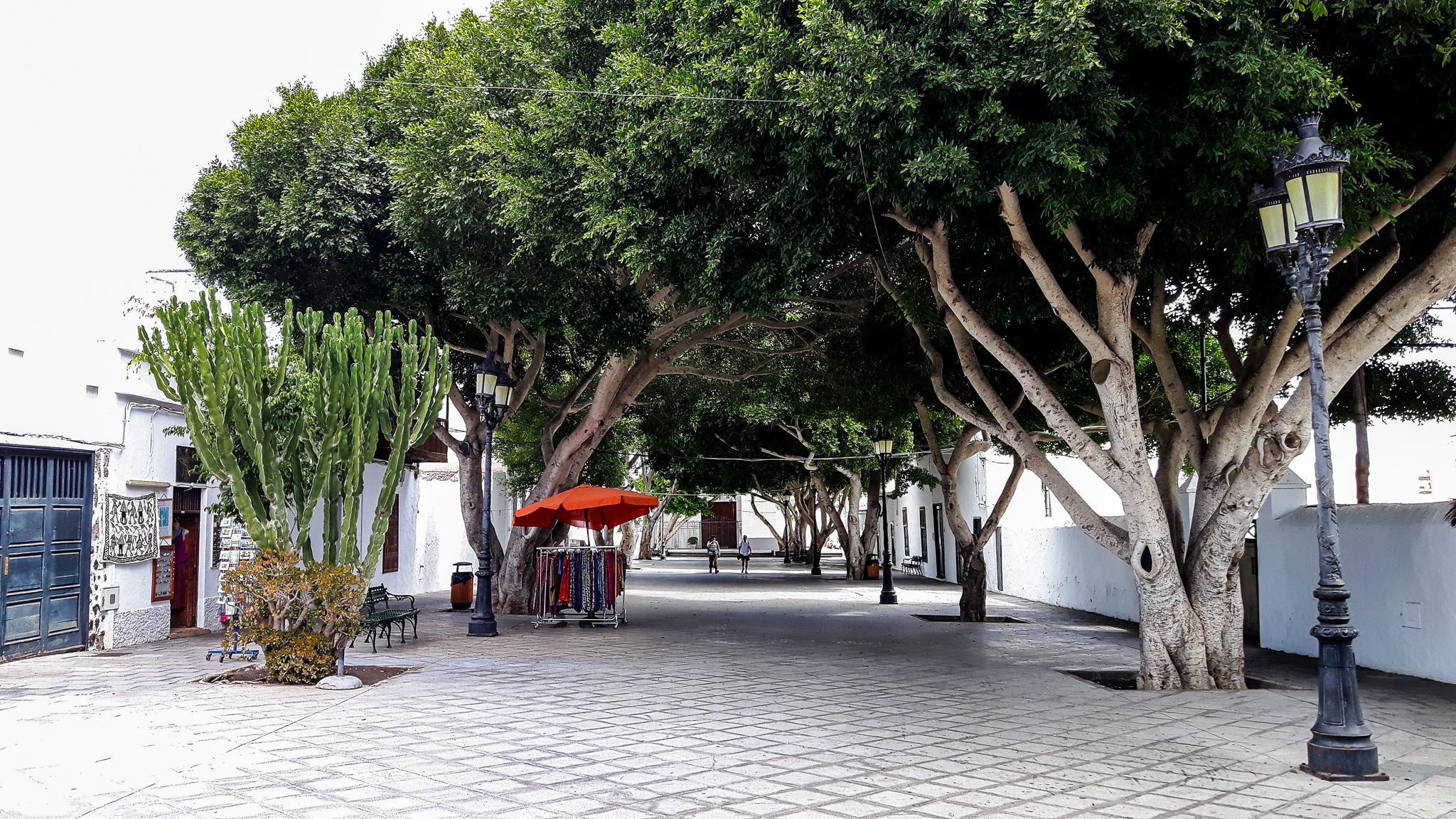 Haria-Plaza-León-y-Castillo
