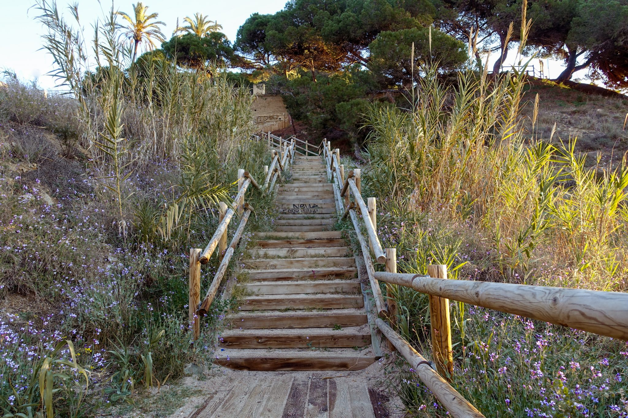 calella-travel-guide-winter-roca-grossa-treppe.jpg