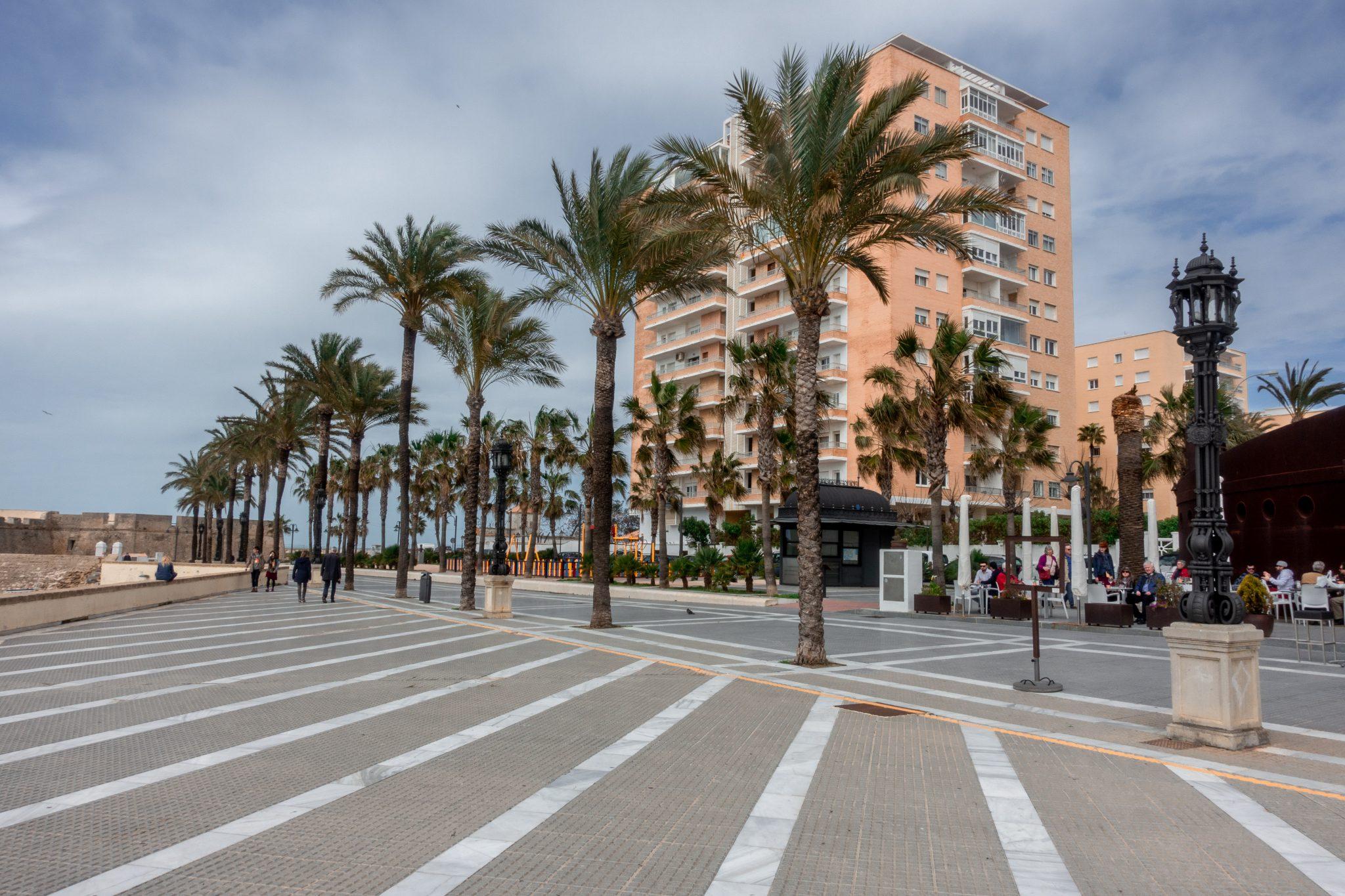 7-kleine-geheimtipps-cádiz-palmen