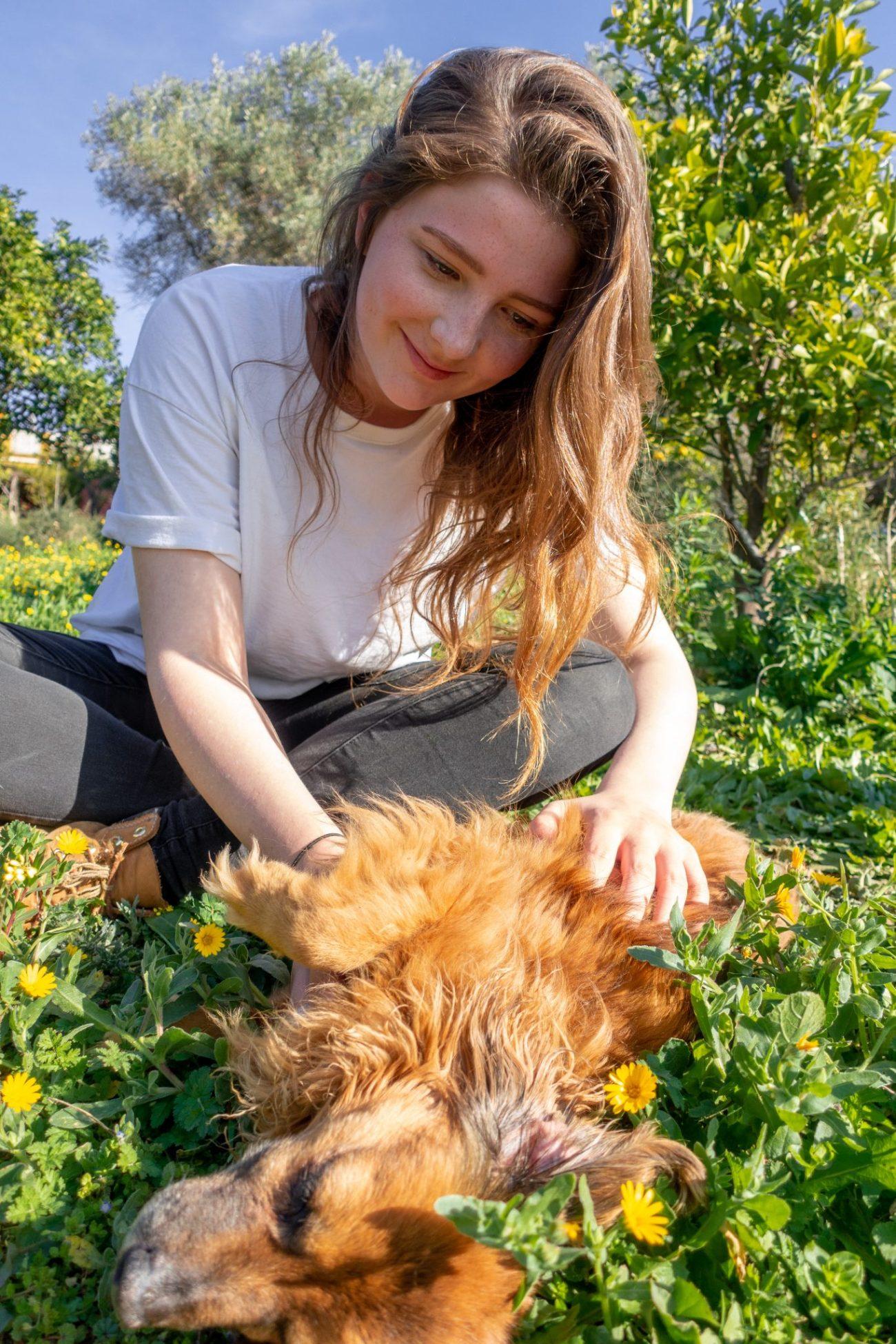 housesitting-guide-kostenlos-wohnen-andalusien-hund