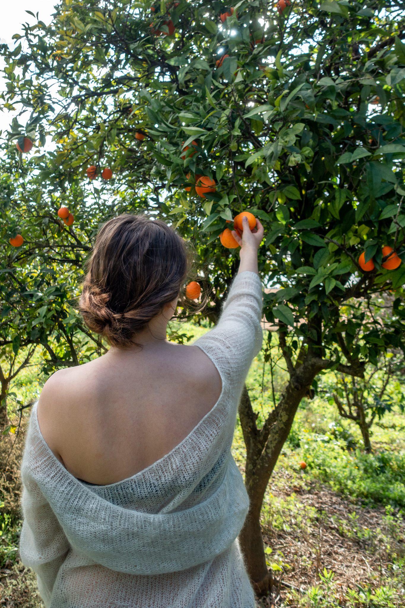 housesitting-guide-kostenlos-wohnen-andalusien-orangen