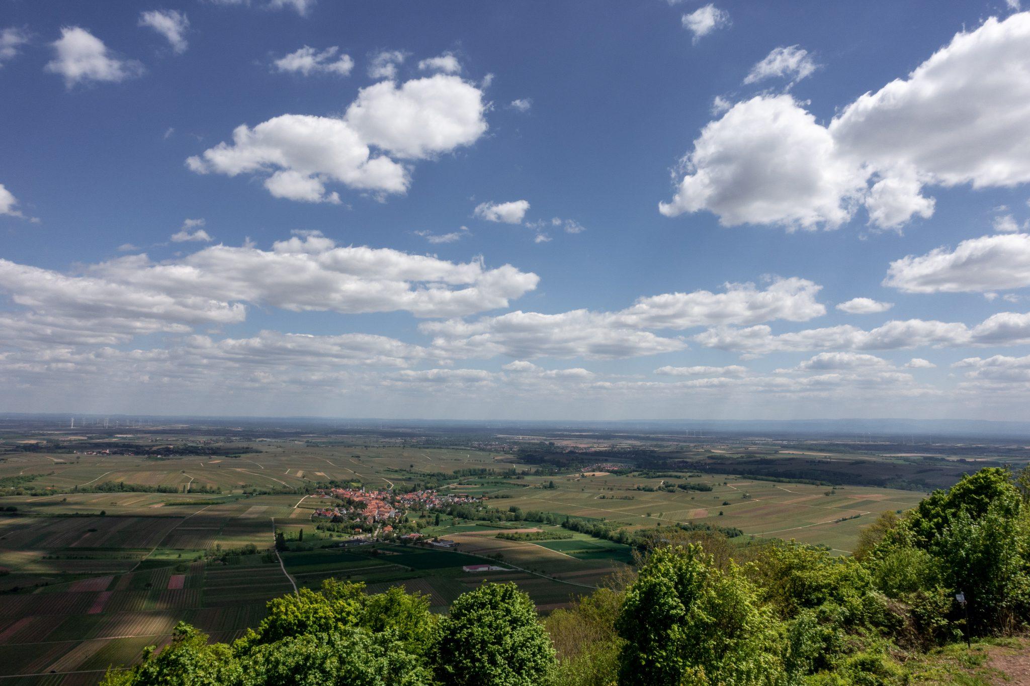 Landau-pfalz-sehenswürdigkeit-madenburg-ausblick