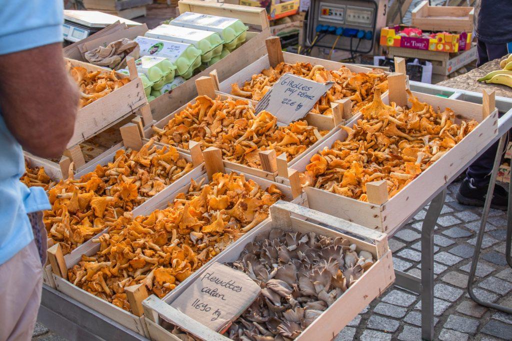 Concarneau-Markt-pilze