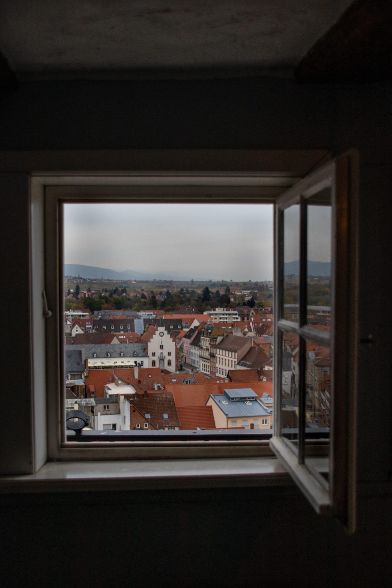 Landau-stiftskirche-fenster-ausblick