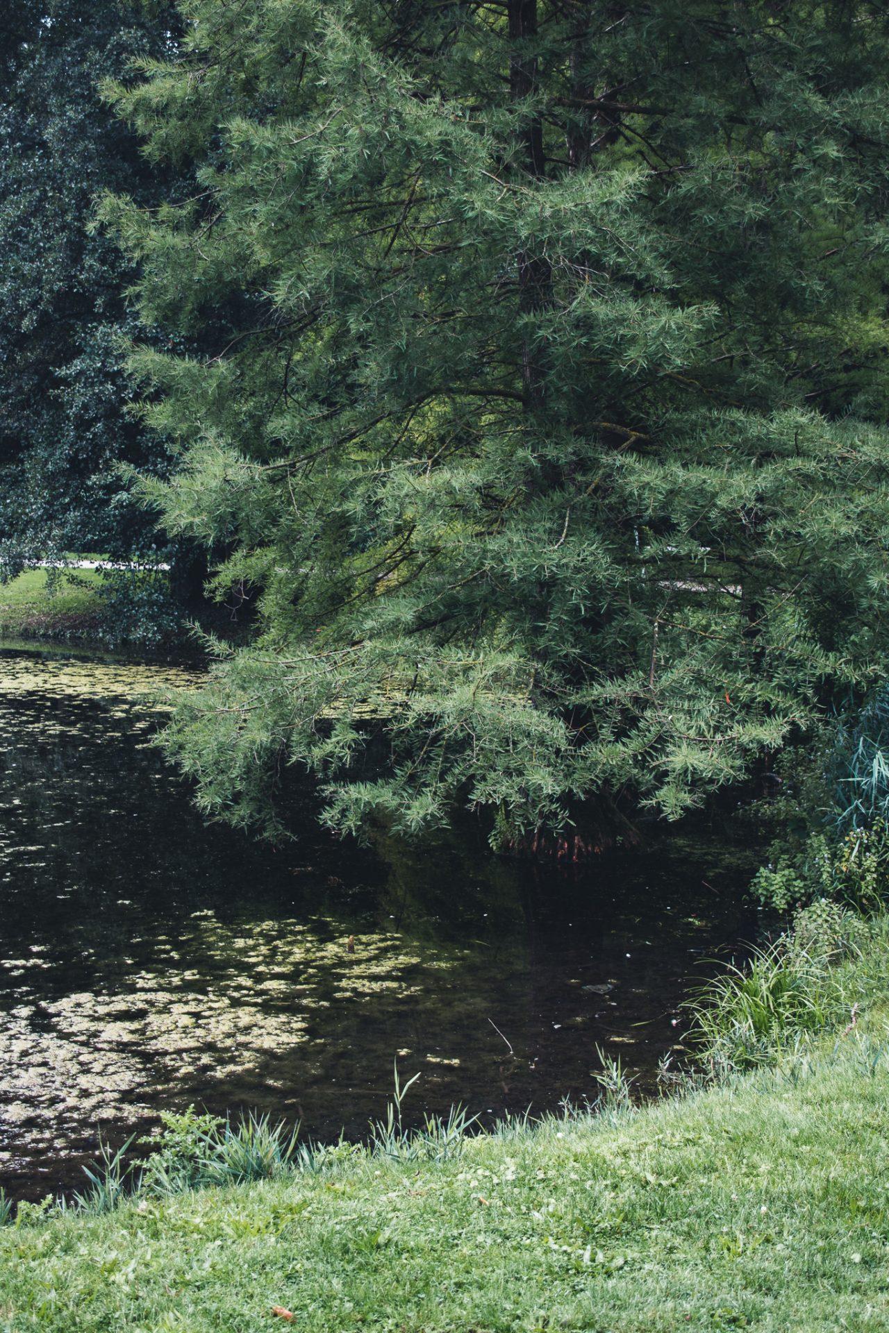 Hamm-Sehenswürdigkeiten-Kurpark