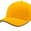 ACPIPS yellow 1