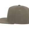 ACSNFI    grey 1
