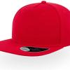 ACSNFI red 1