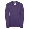 R272B    purple 1