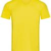 ST9010    daisy yellow 1