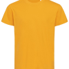 ST9370 indian yellow 1