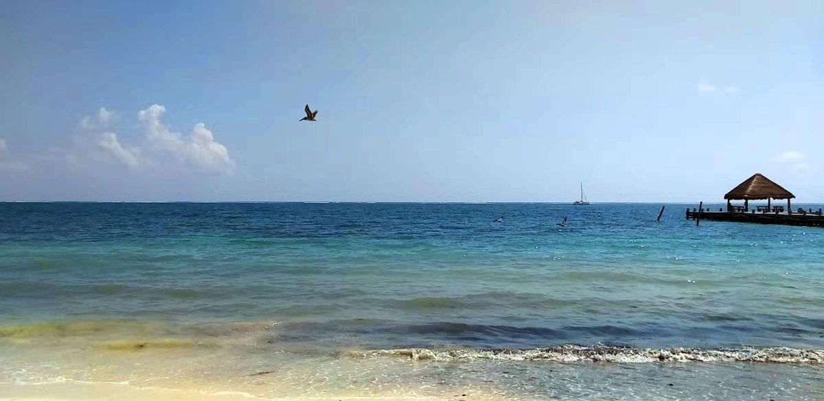 60 minutos de Olas en el mar de Puerto Morelos Quintana Roo México AUDIO y VIDEO sin editar.