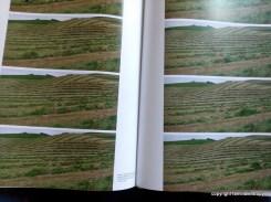 Mit Augenzwinkern: hier sieht man den Künstler, wie er sich durch eine Reihe aus frisch gemähtem Gras wühlt.../ Here you can see the artist how he cralws through a row of freshly mowed grass