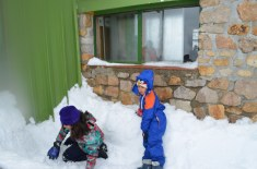 Folia na neve