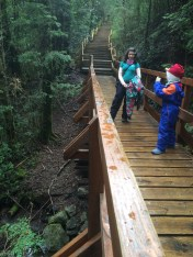 Caminho até a cascata