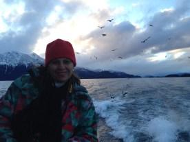 As gaivotas viajam com a gente