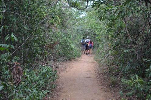 Caminhada até o Ribeirão do Meio