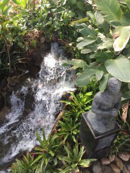 Estufa do Jardim Botânicode Curitiba