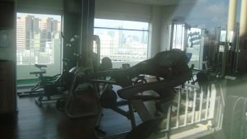 Plaza Inn American Loft