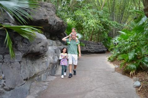 Gorilla Falls Exploration Trail