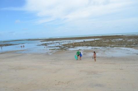 Maré baixa em Serrambi