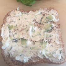 Tzaziki on Wheat Bread