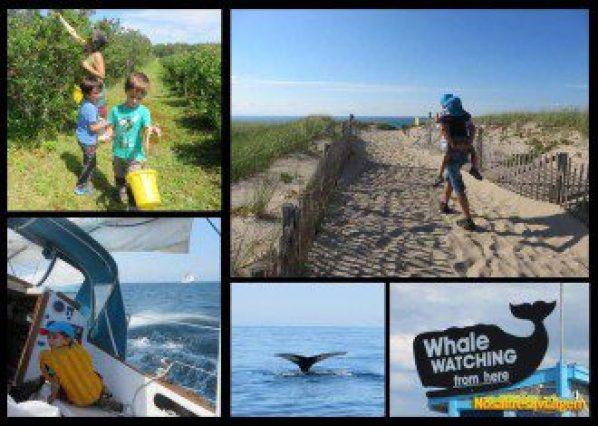 Cape Cod ofrece un montón de actividades para la familia