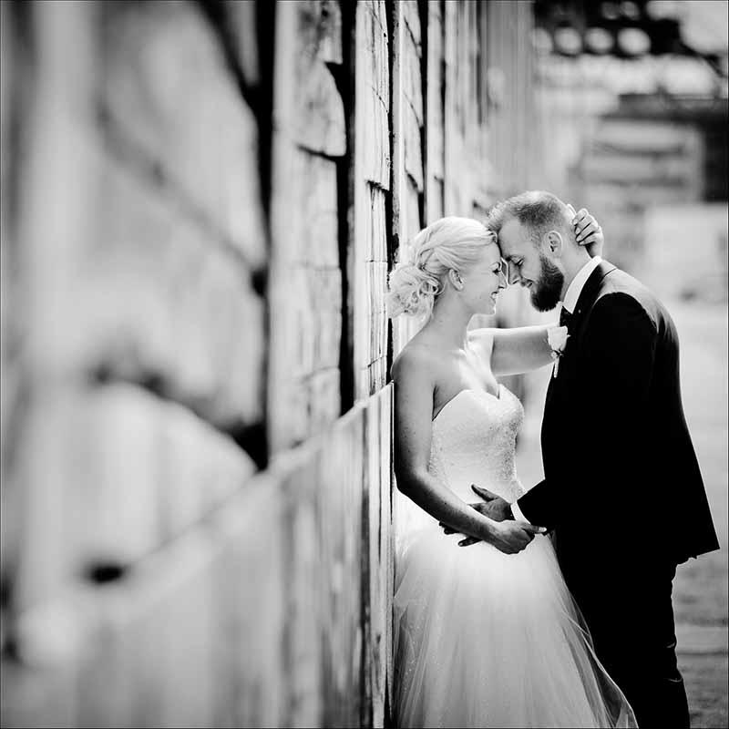 familiefotografering bryllupsfotograf