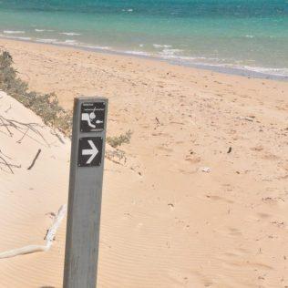 (C) Jule Reiselust: Die Schnorchelgebiete sind gut ausgeschildert, immerhin befindet man sich im Nationalpark und darf nicht überall hinlaufen oder -schwimmen.