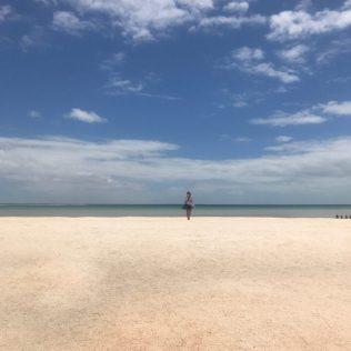 (C) Jule Reiselust: Shell Beach - so weit das Auge reicht nur Muscheln.