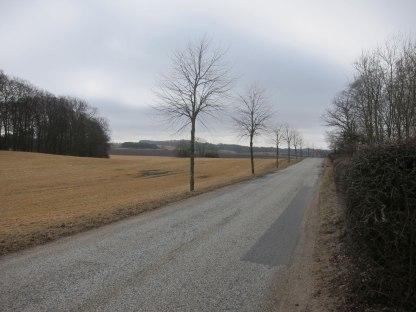 Landskabet ved Selchauhus.