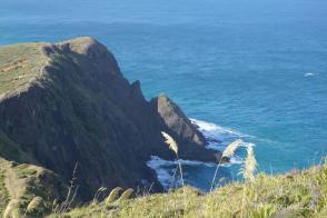 Cape Reinga/ Nordinsel