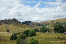 Bei Waitomo auf der Nordinsel