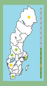 D3c-grenen: Ahlfort i Jokkmokk