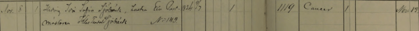 Ida Styrlanders död 1898. Östersunds församling.