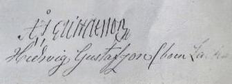 Anders Johan Gustafsson & Hedvig Zachrisdotters namnteckning på testamentet 1872.