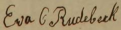 Evas namnteckning 1862. Hogstad församling.