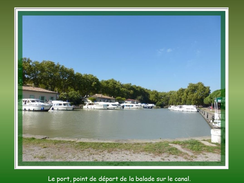 Carcassonne – 1