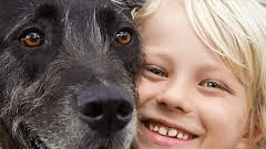 why pets are good for kid's health